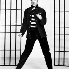 Sobre el festival temático de Elvis en Australia