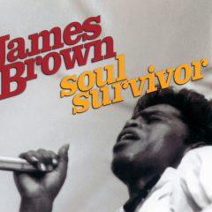 James Brown: Soul Survivor, de Jeremy Marre (2004)
